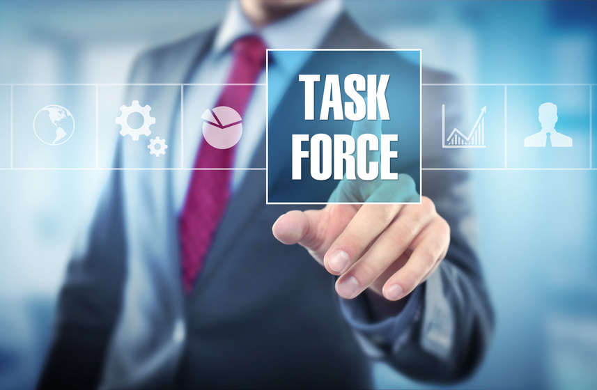 Documentation Task Force